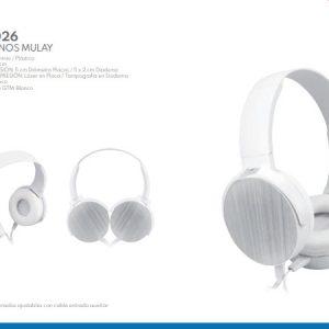 audhm 026-02