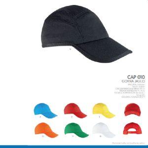 caphm 010-06